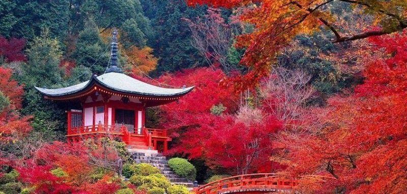 Paysages du japon for Paysage jardin japonais