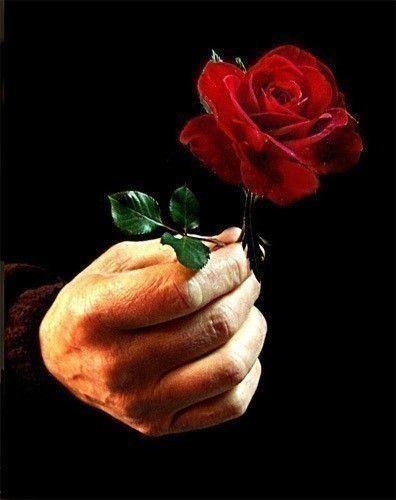 Celui qui offre une rose en garde le parfum sur la main